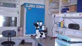 Monoclonal antibodies laboratory