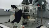 SP5 TCS AOBS Tandem confocal microscope
