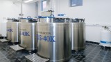 Liquid nitrogen storage vessels