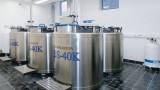 Liquid nitrogen storage vessels