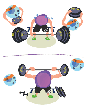 NK bunky